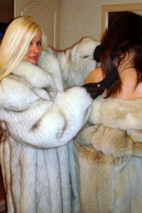 best of Coat fur