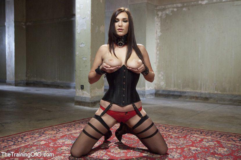 Jackal recommendet corset Preview bondage