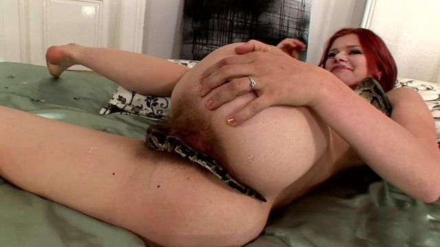 best of As dildo a a Using snake