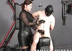 best of Domina mistress