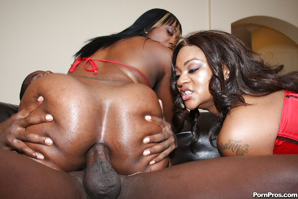 Chaos reccomend African anal mature free
