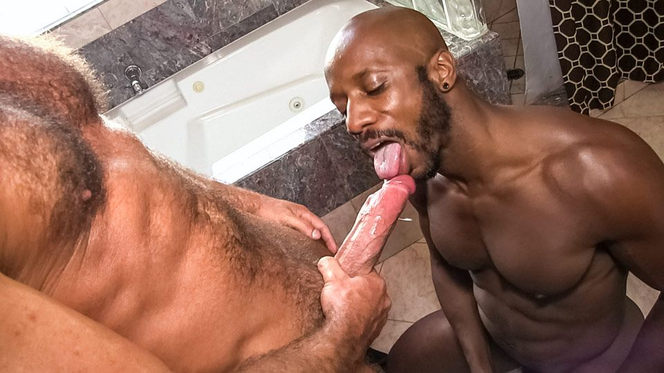 Chocolate C. reccomend Josh west cumshot