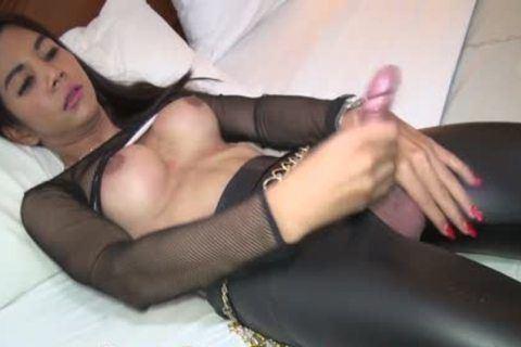 Patrol reccomend small tits thai masturbate penis cumshot