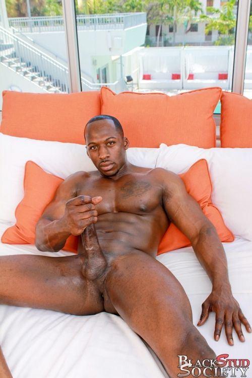 best of Adonis black