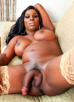 Ebony shemale thumbnails