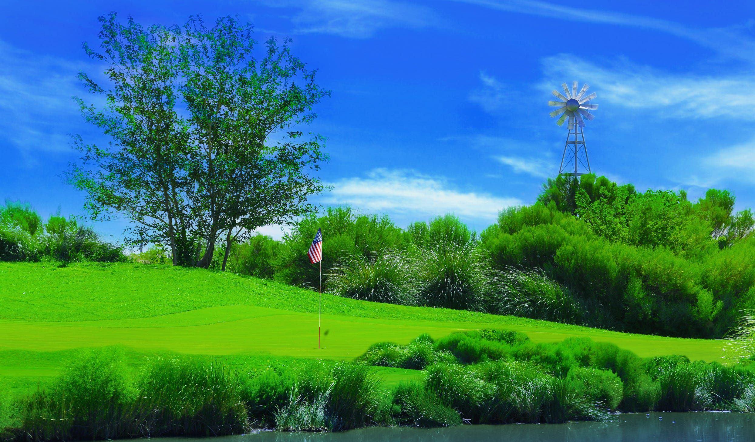 Grasshopper reccomend Landscaping mature trees el paso texas