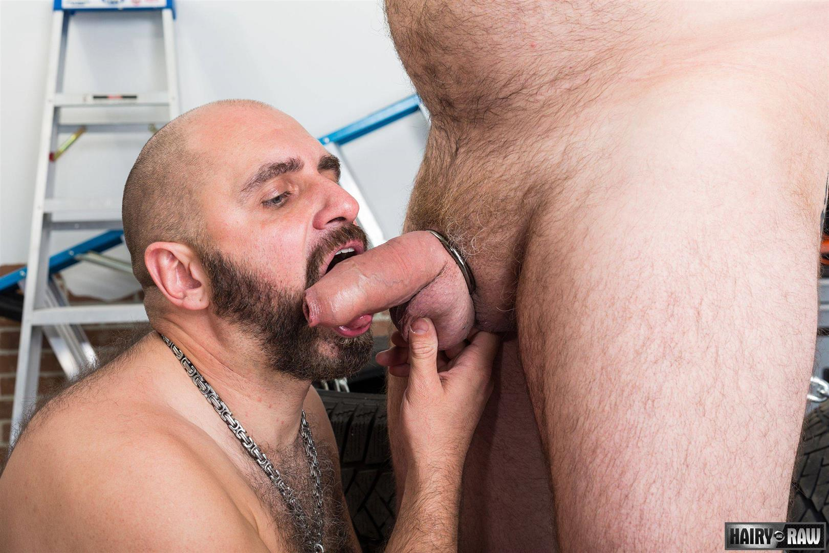 Gay fuck daddy hairy gallery