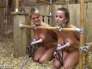 Gi-Gi recommendet bondage slave