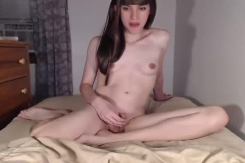 best of Transgender blowjob and anal tits penis small